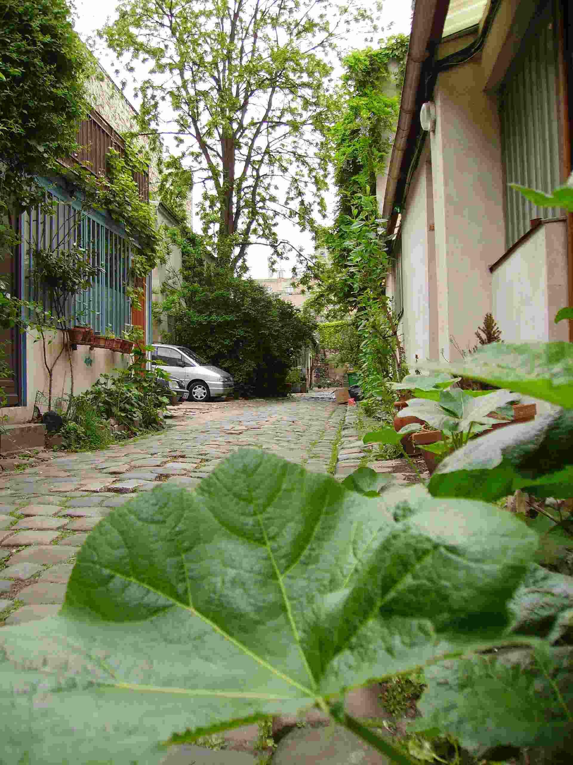 Venez découvrir un Paris authentique et surprenant !