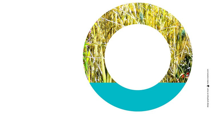 Le Génie des Jardins 2021 : L'Oasis