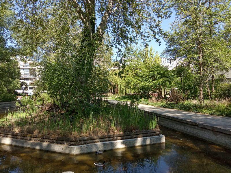 Un charmant îlot dans le parc de Bercy